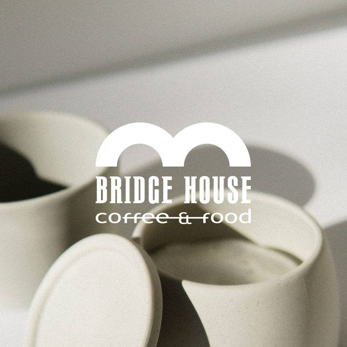logo design bridge
